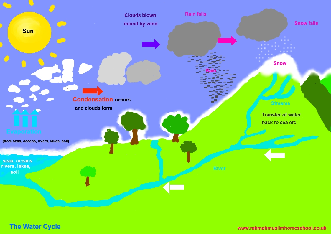 Water Cycle: The Resources Of Islamic Homeschool In The UK