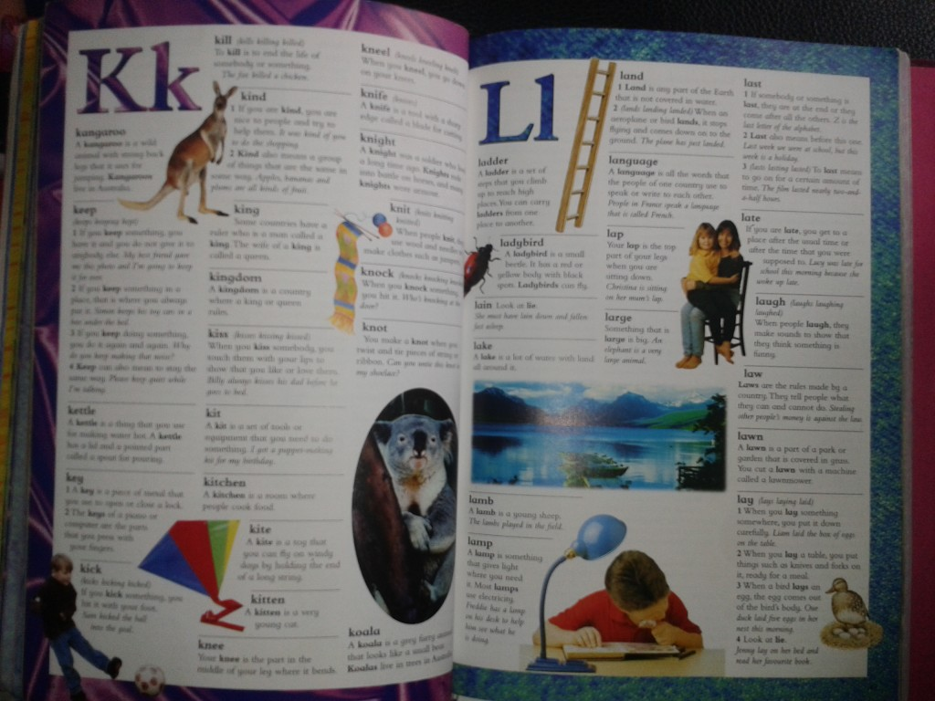 Dictionary3