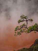 japan hot_spring