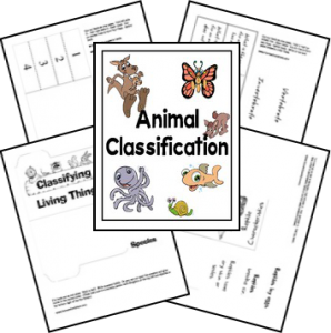 animal_classification_lapbook
