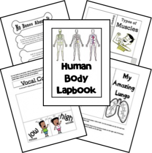human-body-unit-and-lapbook cover